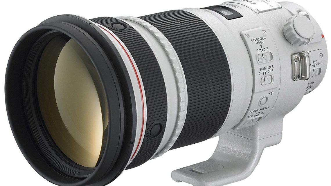 Canon EF 300mm f/2.8L IS USM – Test / Avis