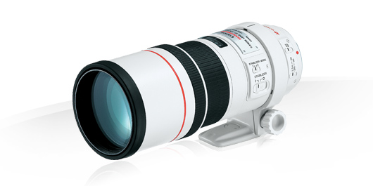 Canon EF 300mm f/4L IS USM – Test / Avis